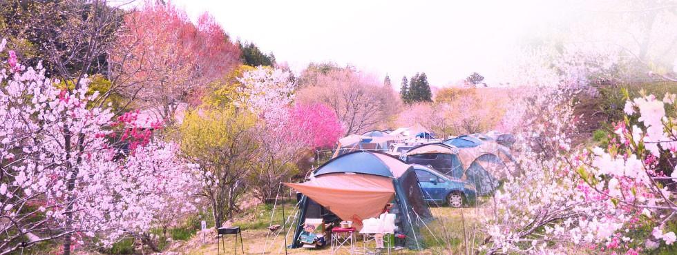 キャンプ 三河 場 高原